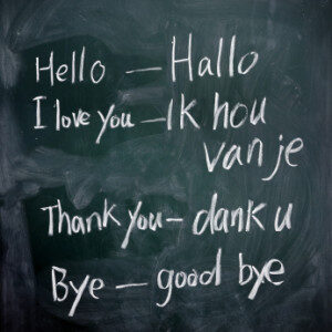 Feite in English!